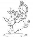 colora il coniglio bianco col suo orologio