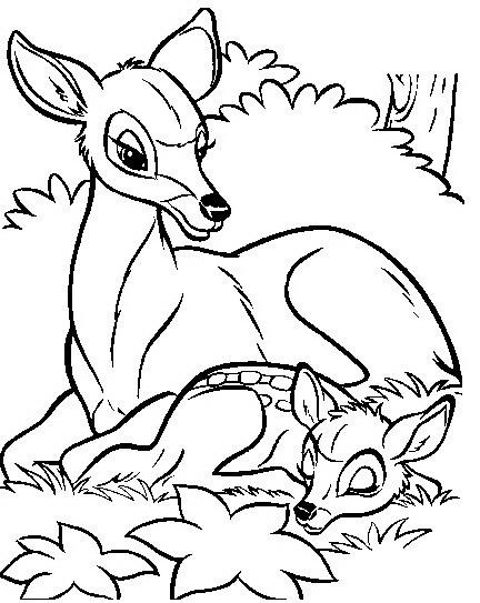 Bambi Da Colorare Disegni Gratis