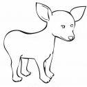 immagine di un cane chihuahua stilizzata da stampare e colorare