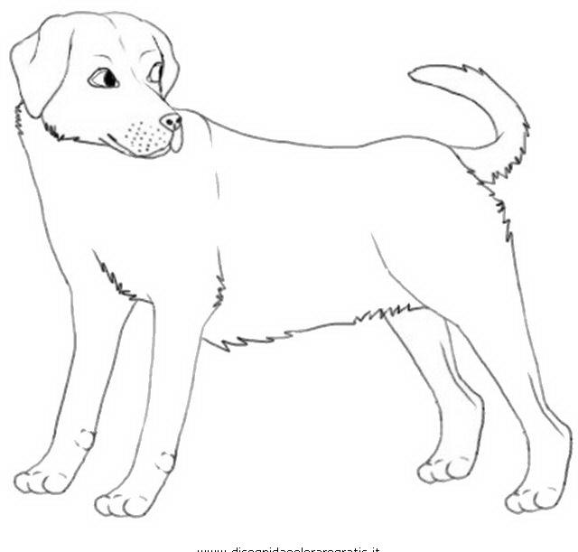 Cani da colorare disegni gratis for Immagini di cani da colorare