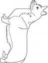 disegno di cani welsh-corgi