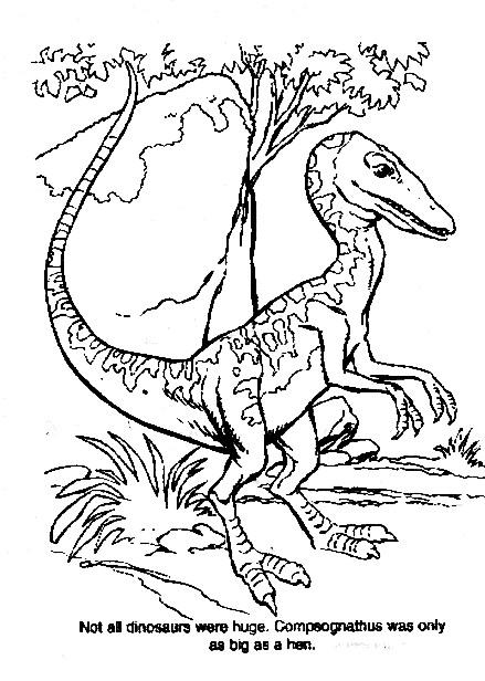 Dinosauri da colorare disegni gratis - Immagini di dinosauro da colorare in ...