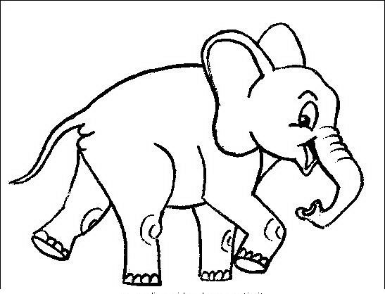 Popolare Elefante da colorare | Disegni Gratis XK66