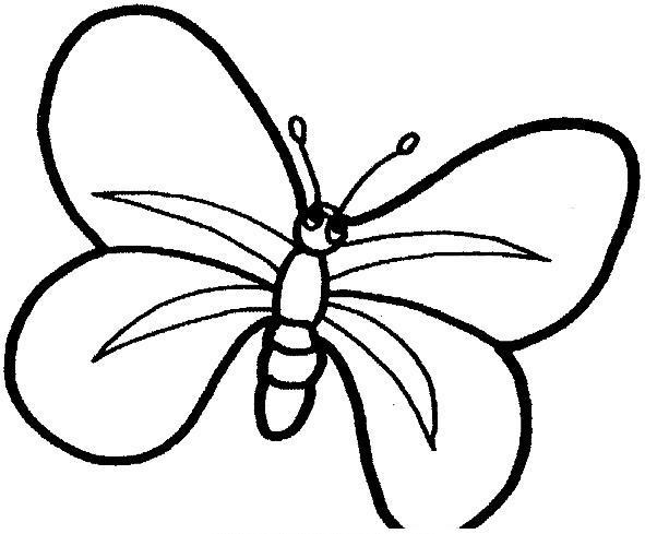 Farfalle da colorare disegni gratis - Dessin de petit papillon ...