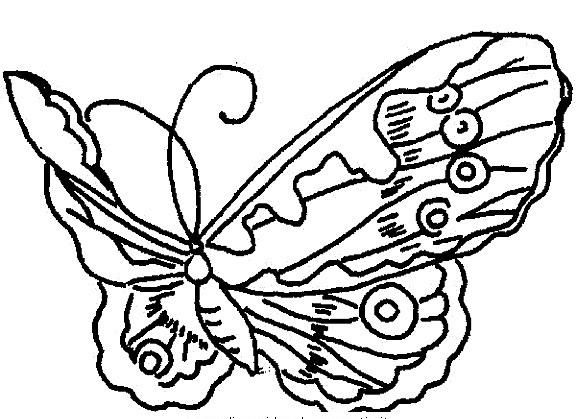 Farfalle Da Colorare Disegni Gratis
