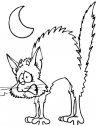disegno di gatto spaventato