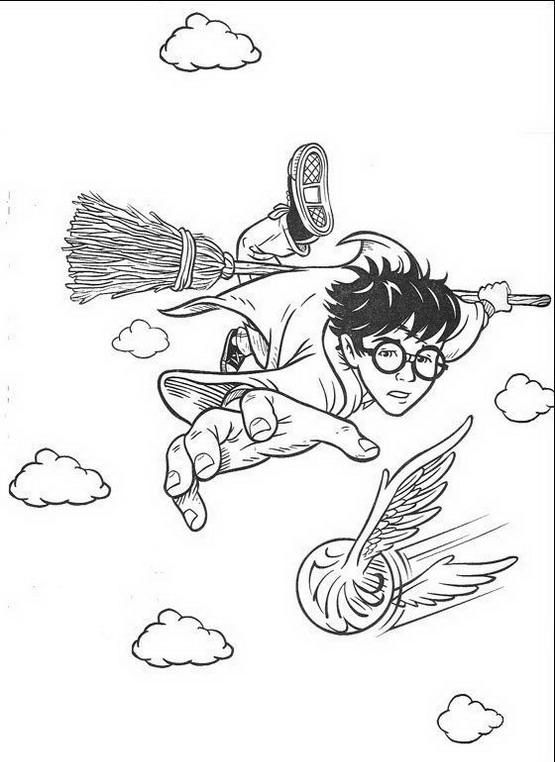 quidditch coloring pages - harry potter da colorare disegni gratis