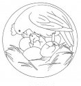 mandala con uccello nel nido, colora