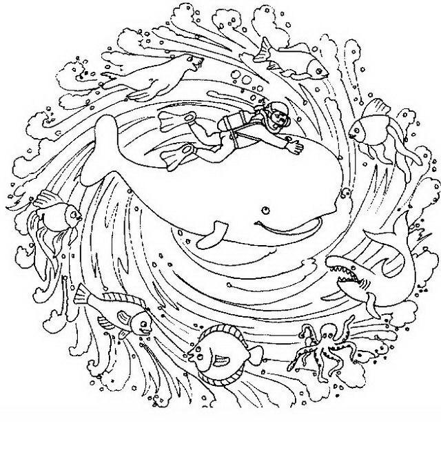Mandala da colorare disegni gratis for Immagini di mare da colorare