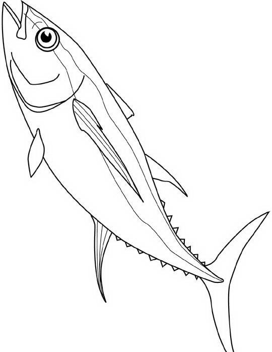 D Line Drawing : Pesci da colorare disegni gratis