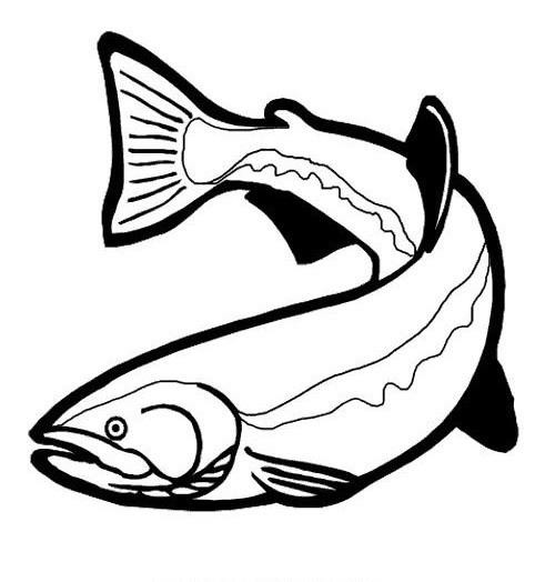 Pesci da colorare disegni gratis for Immagini da colorare di pesci