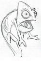 Disegno del camaleonte Pascal.