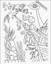Immagine di Ariel che trova il relitto