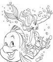 il pesciolino Flounder, Ariel e Sebastian nuotano, colora