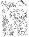 disegno di Ariel che esplora gli abissi