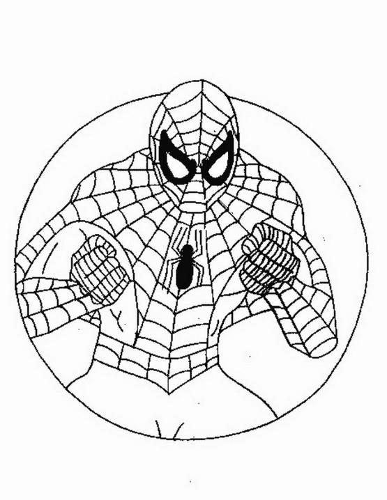 Spiderman da colorare disegni gratis for Spiderman da colorare pdf