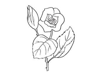 disegni di fiori face
