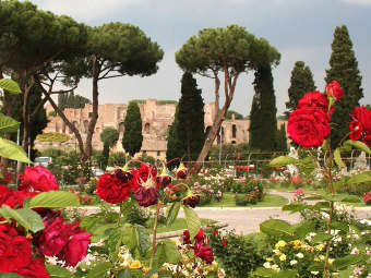 Giardinaggio fai da te gratis - Guida giardinaggio ...