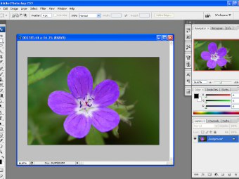 Manuale Di Adobe Photoshop In Italiano