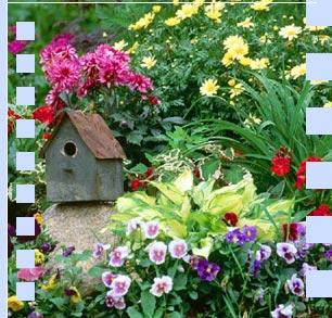 Giardinaggio Guide