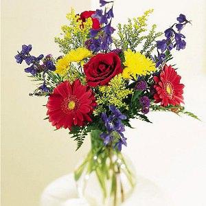 Immagini fiori gratis
