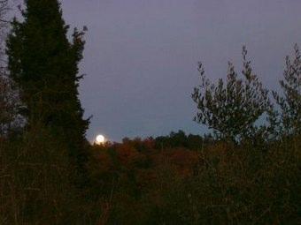 La Luna E I Falò Riassunto