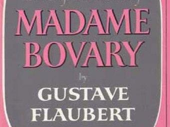 Madame Bovary Riassunto