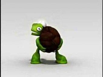 Tartaruga Rap Cartolina